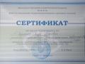 Сертификат публикации Воронеж-2017