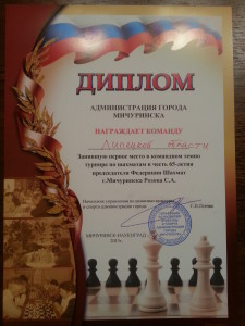 Победили в командном турнире , Мичуринск, 2015